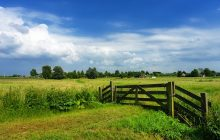 Brakke polders: grondstof voor drinkwater én verzoeting van de polder
